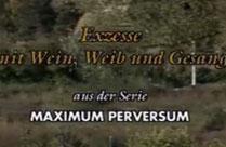Maxium perversum – ein geiler Retroporno